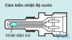 cam-bien-nhiet-do-nuoc-lam-mat (1)
